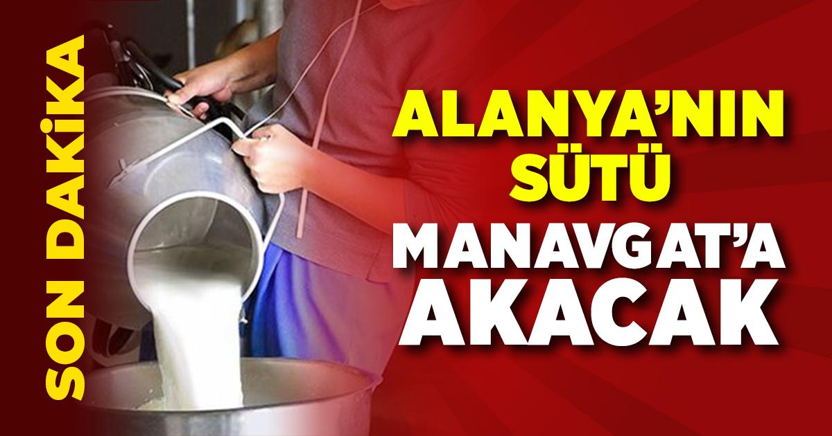 Alanya'nın sütü Manavgat'a emanet