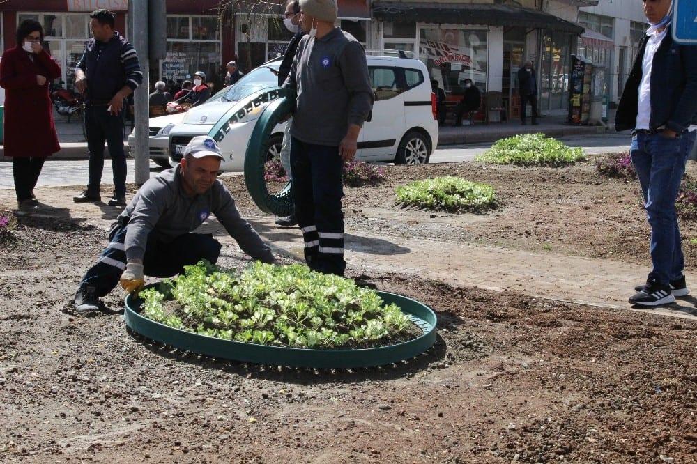 Korkuteli' ilçesinde 11 bin çiçek toprakla buluştu