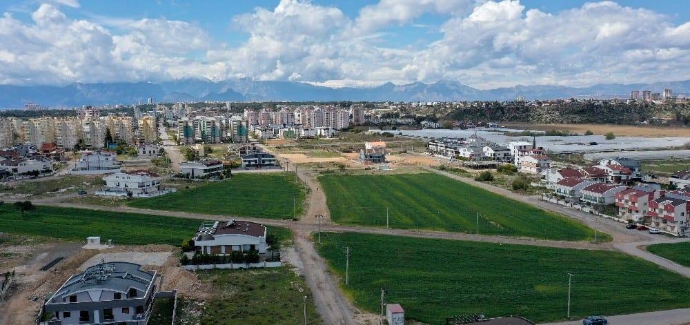 Muratpaşa'da 20 bin kilogram buğday hasat edilecek