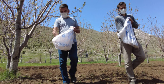 Büyükşehir'den bal üreticilerine destek   Gündoğmuş'ta üreticilere arı otu verildi