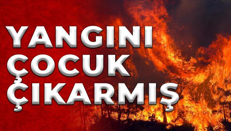 Manavgat'taki yangını 12 yaşındaki çocuğun çıkardığı belirlendi
